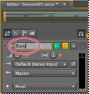 Adobe Audition track name.png